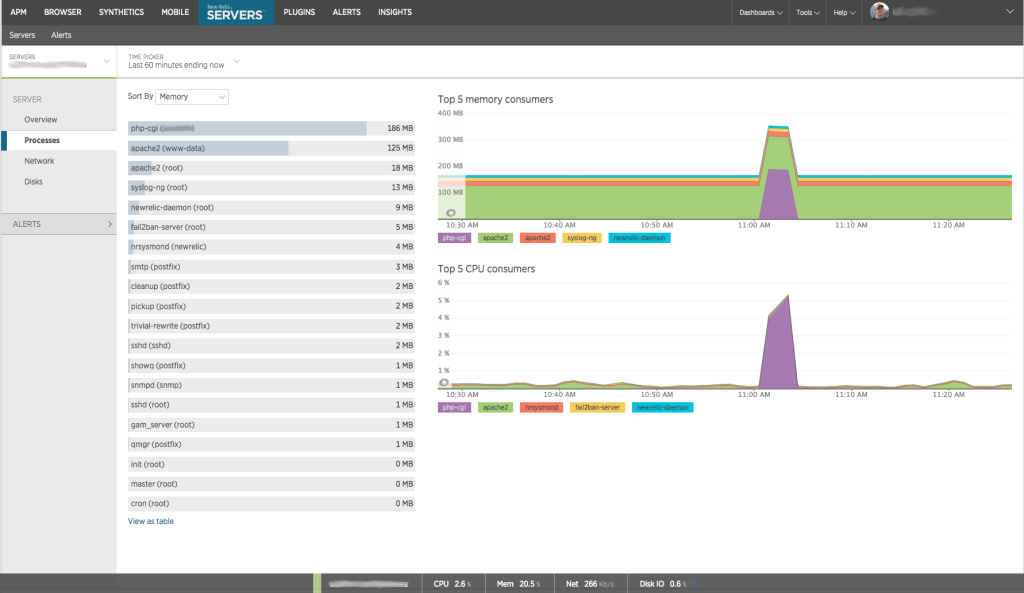 New Relic Server Processes